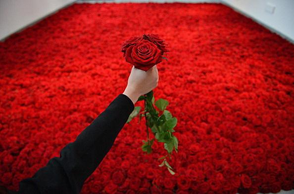 File: Roses