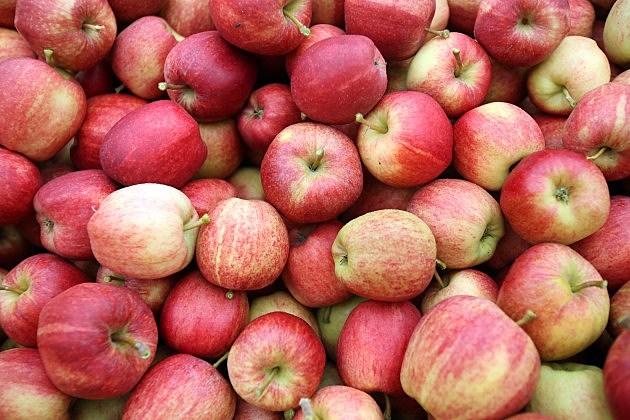 Apple Crop
